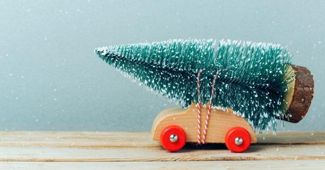 Утилізуй це: 15 пунктів збору новорічних ялинок у Києві