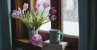 Першоцвіти: 10 книжкових прем'єр цієї весни