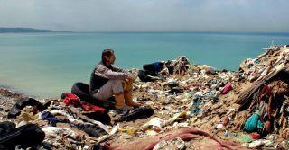 EcoCinema: 8 документальних фільмів про природу Землі