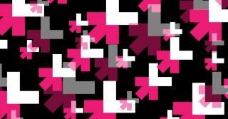 Книжковий Арсенал: 12 подій на гендерну тематику