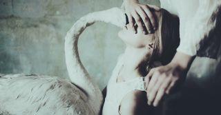 Sex & Dreams: О чем мечтают женщины и мужчины