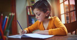 Non-standard: 5 програм позашкільної освіти з креативним підходом до навчання