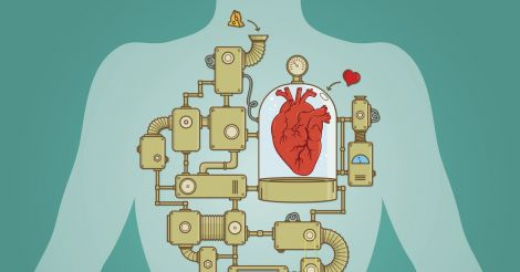 Под защитой: Как сохранить здоровье сердца