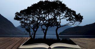 Клас - не вода: Нові переклади класичних творів