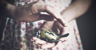 Lost Child: Як допомогти батькам, які переживають втрату дитини під час вагітності чи пологів