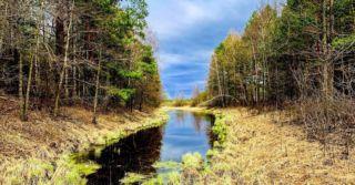 """""""Из варяг в греки"""": Приключения в краю лесов и болот"""