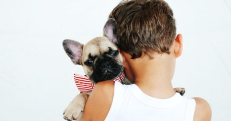 Ребятам о зверятах: Как помочь ребенку выстроить отношения с домашним питомцем