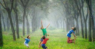 Інклюзивна освіта: Італійсько-український досвід