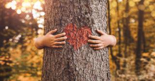 Эмпатия: 10 стратегий, чтобы научить детей сопереживанию