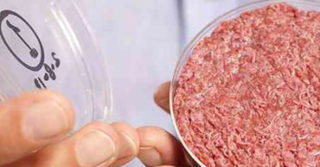 В Европе будет доступно синтетическое мясо