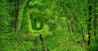 Рейтинг малоизвестных романтических мест мира: Украина в ТОПе