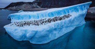 В Антарктиде новый температурный рекорд