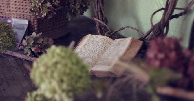 Книги, которые хочется читать, чтобы отвлечься от повседневной суеты