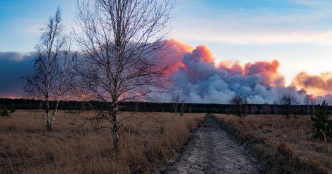 Чернобыльская зона пылает уже восьмой день (ФОТО)