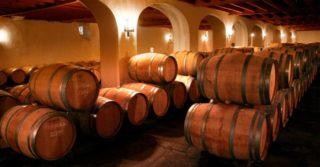 Во Франции из вина хотят сделать антисептик