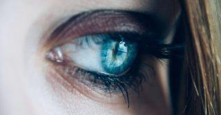 Глаза в глаза: как синхронизироваться с мозгом собеседника