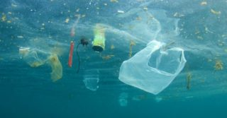 В Испании запретят одноразовый пластик
