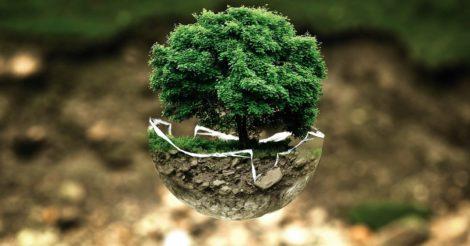 Как стать более экологически ответственными. Истории трех девушек