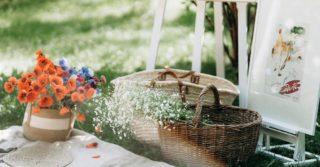 Лето в большом городе: 5 мест для идеального пикника в Киеве