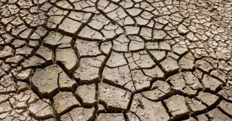 Земля потеплеет на 1,5°C в следующие 5 лет