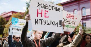 За фото с животными в Киеве теперь могут оштрафовать