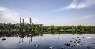 Из-за моющих средств с фосфатами цветут реки