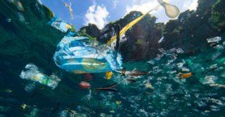 Пластика в водоемах будет больше, чем рыбы