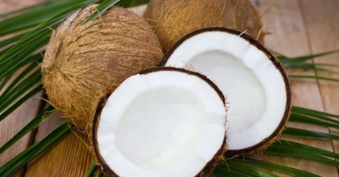На Бали студентам разрешили платить за учебу кокосами