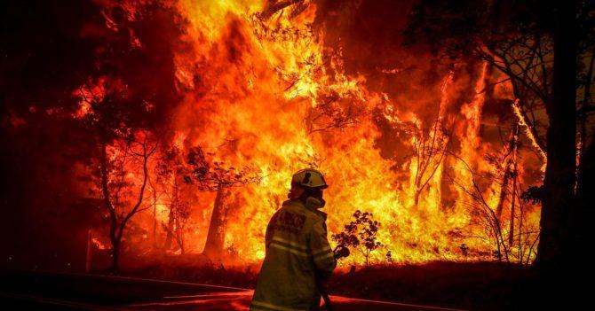 2020 год - самый жаркий за всю историю