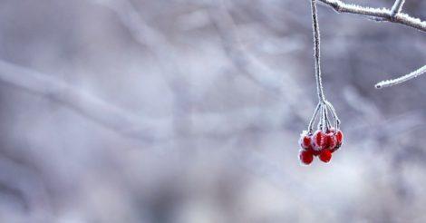 Когда в Украине ударят морозы и начнет засыпать снегом