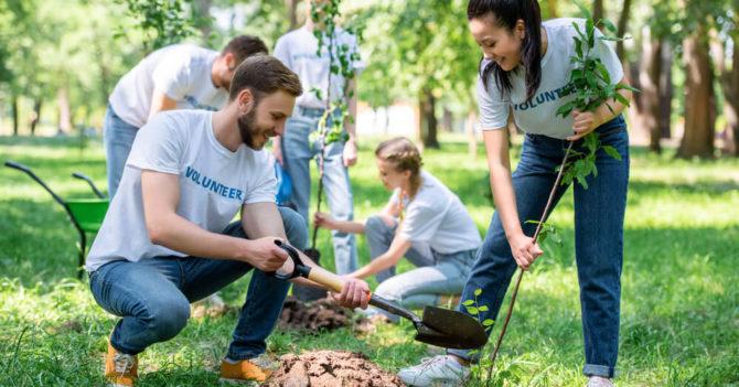 В феврале стартует Всеукраинская школа волонтеров