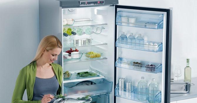 Советы по выбору холодильника с системой NoFrost