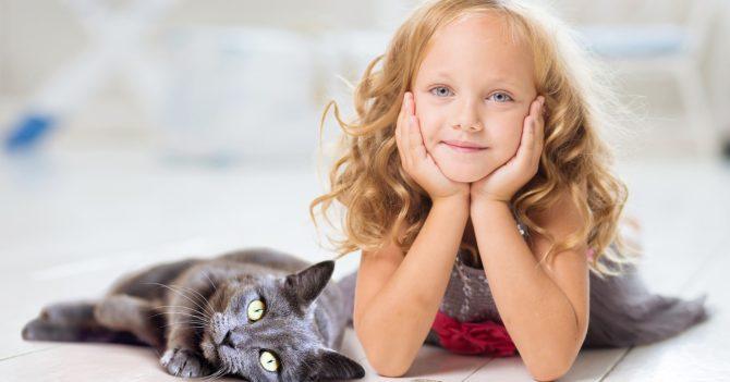 Перший у світі корм, який зменшує рівень алергенів у котів: Purina PRO PLAN® LiveClear®