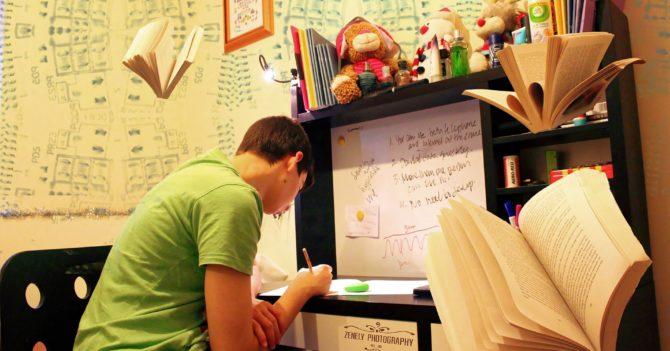 Причины популярности школьных решебников