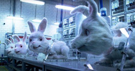 Великобритания может разрешить тестировать косметику на животных
