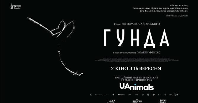 У прокат виходить документальний фільм Хоакіна Фенікса про життя свині «Гунда»